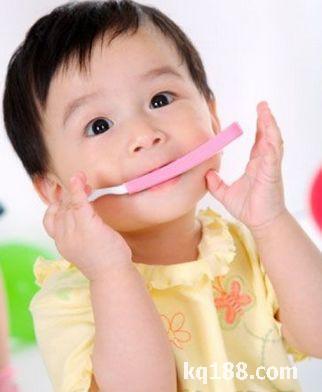 婴儿口腔内部结构图